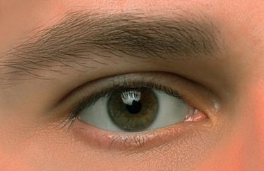 Occhio marrone uomo