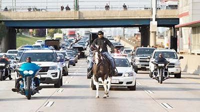 A cavallo fra le macchine