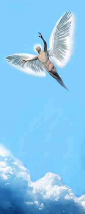 Vola in cielo