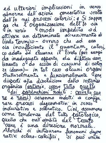 Amleto 2
