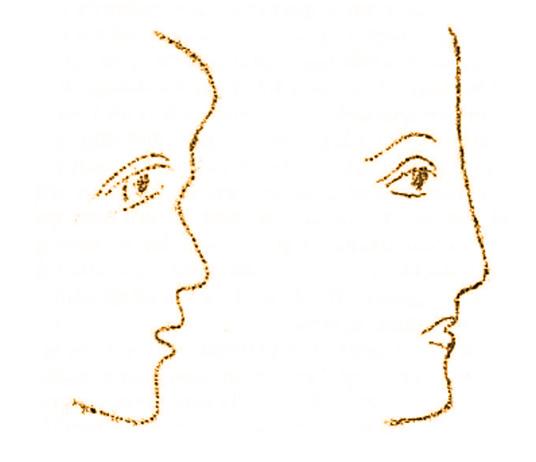 Due profili