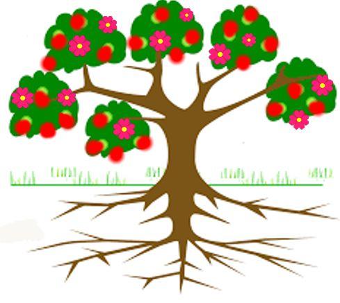 Albero con fiori e frutti