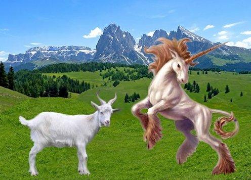 Capra e unicorno