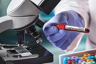 Carognavirus