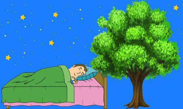 Dormiente
