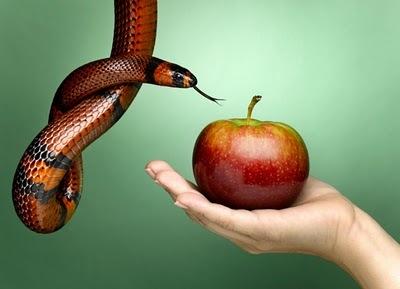 Eva e la mela
