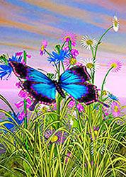 Farfalla sui fiori