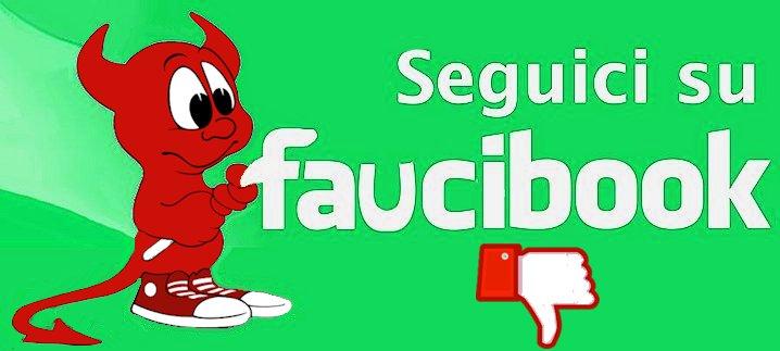 Faucibook