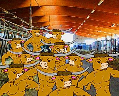 Fuga dei Minotauri dalla stalla