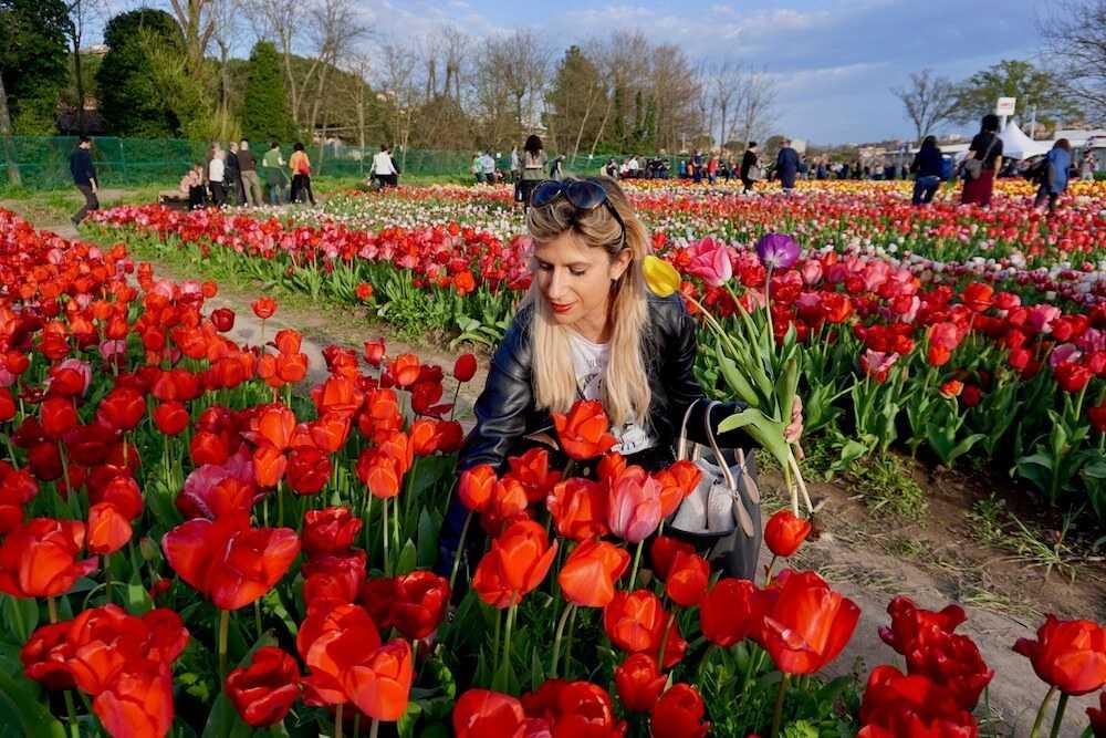 Il Parco dei Tulipani a Roma