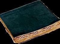 Il diario