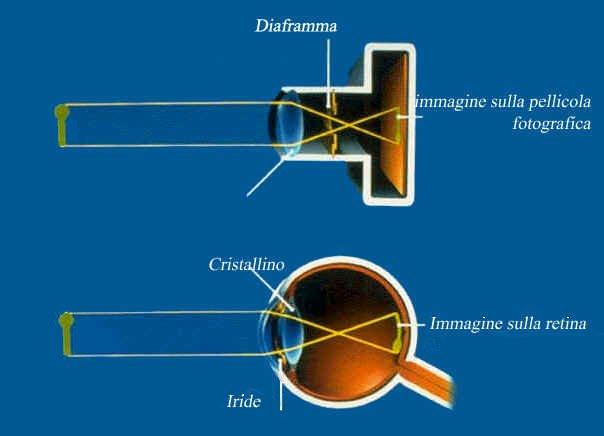 Occhio e macchina fotografica