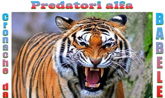 Predatori alfa