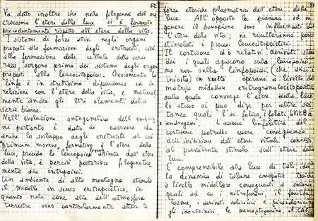 Quaderno Amleto