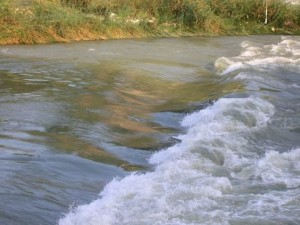 La rapida di Ponte Milvio
