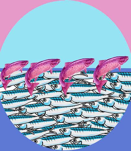 Sardine e salmoni