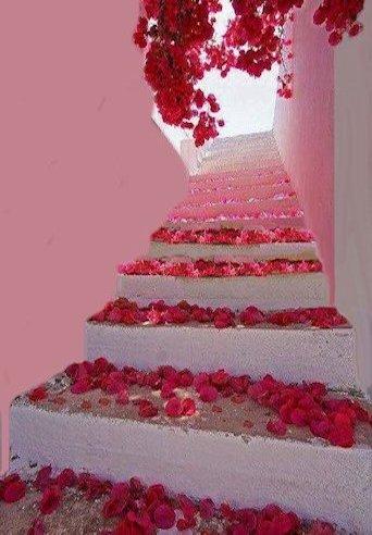 Scala con rose