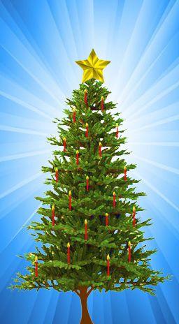 Stella Di Natale In Casa.La Stella Di Natale L Archetipo