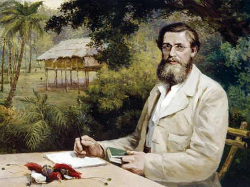 Victor Evstafieff «Alfred Russel Wallace»