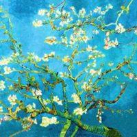 Van Gogh «Mandorlo in fiore