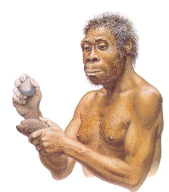 australopiteco lavoratore