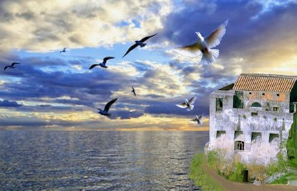 colombe sul mare