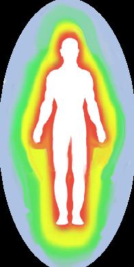 fisico eterico astrale Io