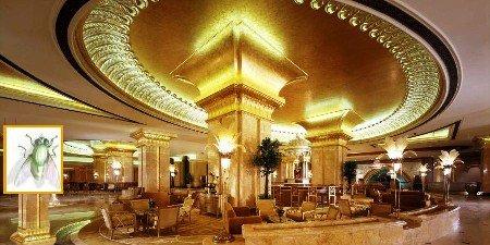 Hotel lussuoso