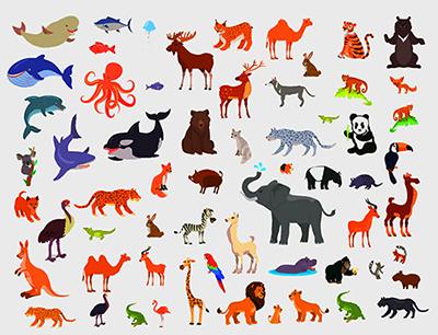 specie animali