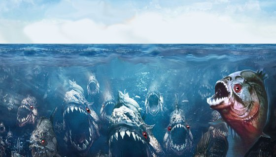 Vasca di piranha